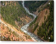 Inspiration Point, Yellowstone River Acrylic Print by Michel Hersen