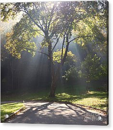 Inspirational Scene Sun Streaming Fog Square Acrylic Print