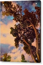 Inspired By Maxfield Parrish Acrylic Print