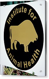 Institute For Animal Health Sign Acrylic Print by David Hay Jones/science Photo Library