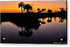 Acrylic Print featuring the photograph Intense Reflections by Richard Zentner