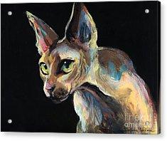 Intense Sphinx Sphynx Cat Art Painting Acrylic Print