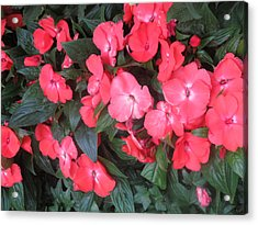 Acrylic Print featuring the photograph Interior Decorations Butterfly Garden Flowers Romantic At Las Vegas by Navin Joshi