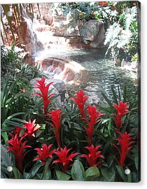Acrylic Print featuring the photograph Interior Decorations Water Fall Flowers Lights Shades by Navin Joshi