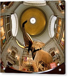 Interiors Of A Museum, National Museum Acrylic Print by Panoramic Images