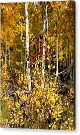 Into Autumn Acrylic Print