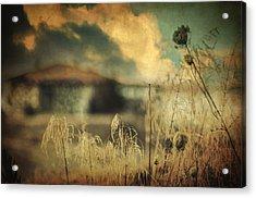 Into Deep Sleep Acrylic Print by Taylan Apukovska