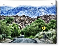 Acrylic Print featuring the photograph Into The Alabamas by Brad Allen Fine Art