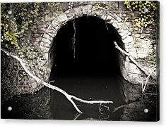 Into The Black Acrylic Print