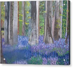 Into The Bluebell Wood Acrylic Print