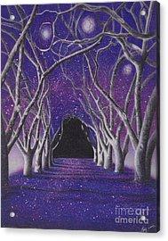 Into The Dark Acrylic Print