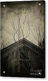 Into The Dark Past Acrylic Print by Trish Mistric