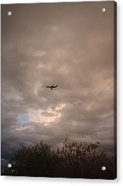 Into The Evening Sky Acrylic Print by Yvette Pichette