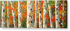 Into The Fall Acrylic Print
