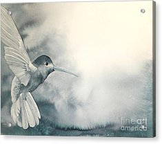 Into The Light Acrylic Print by Robert Hooper