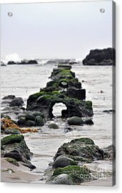 Into The Ocean Acrylic Print by Minnie Lippiatt