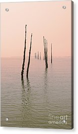 Into The Pink Sunset... Acrylic Print