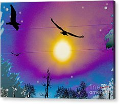 Into The Sun Acrylic Print by Bobby Hammerstone
