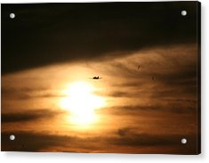 Acrylic Print featuring the photograph Into The Sun by David S Reynolds