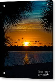 Into The Sunset Acrylic Print by Anne Kitzman