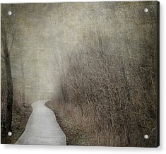 Into The Unknown Acrylic Print by Jai Johnson