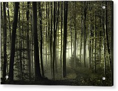 Into The Unknown Acrylic Print