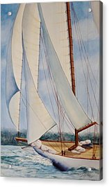 Into The Wind Acrylic Print by Judy Meng