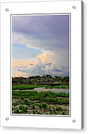 Intracoastal Colours Acrylic Print by Alice Gipson