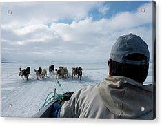 Inuit Hunter And Husky Dog Team Acrylic Print by Louise Murray
