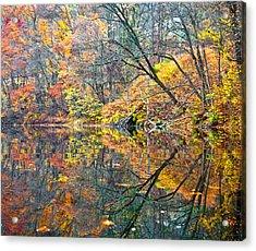 Invasion Acrylic Print by Tom Cameron