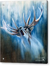 Invitation To The Quest Acrylic Print
