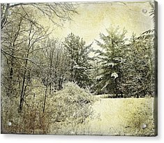 Invitation To Winter  Acrylic Print by Dianne  Lacourciere