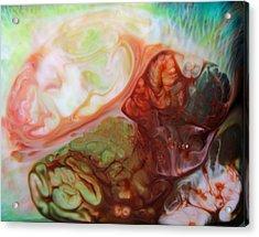 Invitro Acrylic Print by Lucy Matta - LuLu