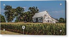 Iowa Farm Acrylic Print by Ray Congrove
