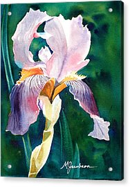 Iris 1 Acrylic Print by Marilyn Jacobson