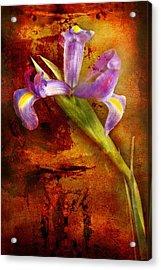 Acrylic Print featuring the photograph Iris Art by Bob Coates