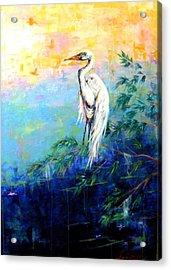 Iris Acrylic Print by Dawn Gray Moraga