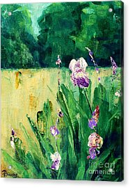 Acrylic Print featuring the painting Iris Field by Mary Lynne Powers