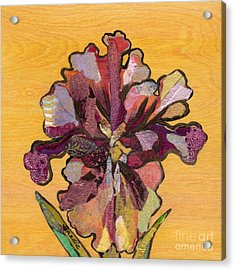 Iris I Series II Acrylic Print by Shadia Derbyshire