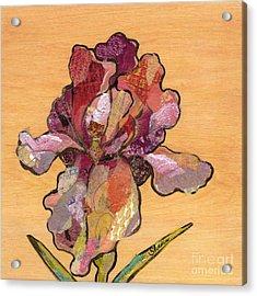 Iris II - Series II Acrylic Print