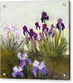 Iris In The Yard Acrylic Print