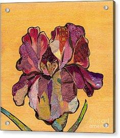 Iris Iv - Series II Acrylic Print