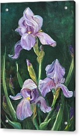 Iris Acrylic Print by Jolyn Kuhn