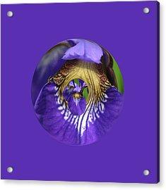 Iris Leaf Loop Acrylic Print