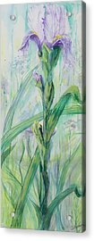 Acrylic Print featuring the painting Iris Number Two by Cathy Long