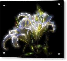Iris Of The Eye Acrylic Print