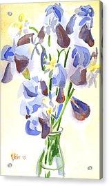 Irises Aglow Acrylic Print