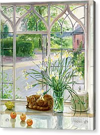 Irises And Sleeping Cat Acrylic Print by Timothy Easton