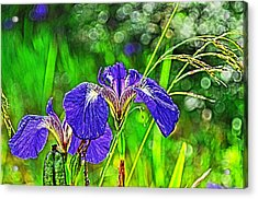 Acrylic Print featuring the photograph Irises by Cathy Mahnke