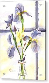 Irises In The Window II Acrylic Print by Kip DeVore